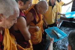 Animal Liberation led by H.E. Kangyur Rinpoche on 17 May 2008.